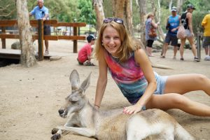 Currumbin zoo